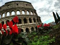 coliseum with red flowers